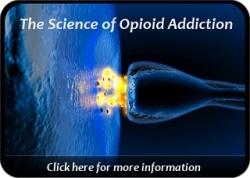 opiatereceptor12